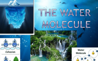 The Ways of Water